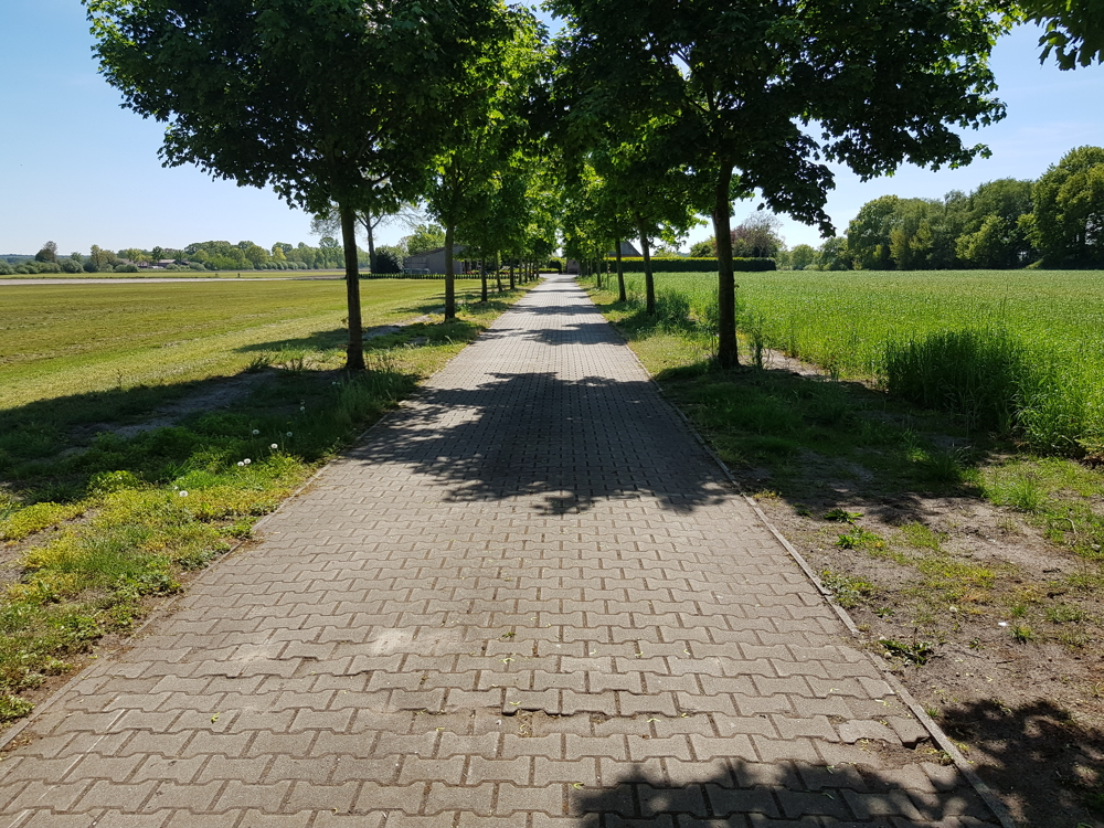 Allee.